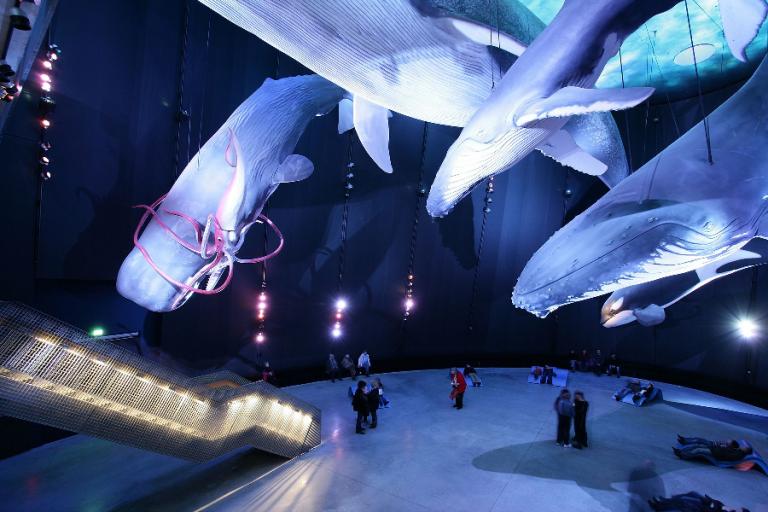 der Waalsaal im Ozeaneum Stralsund