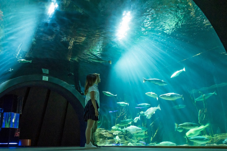2 Kinder im Ozeaneum Stralsund vor einem Fischbecken